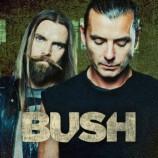 Bush prepara nuevo disco para este año